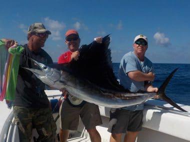 Sailfish Caught on Offshore Charter with Big Fish SGI